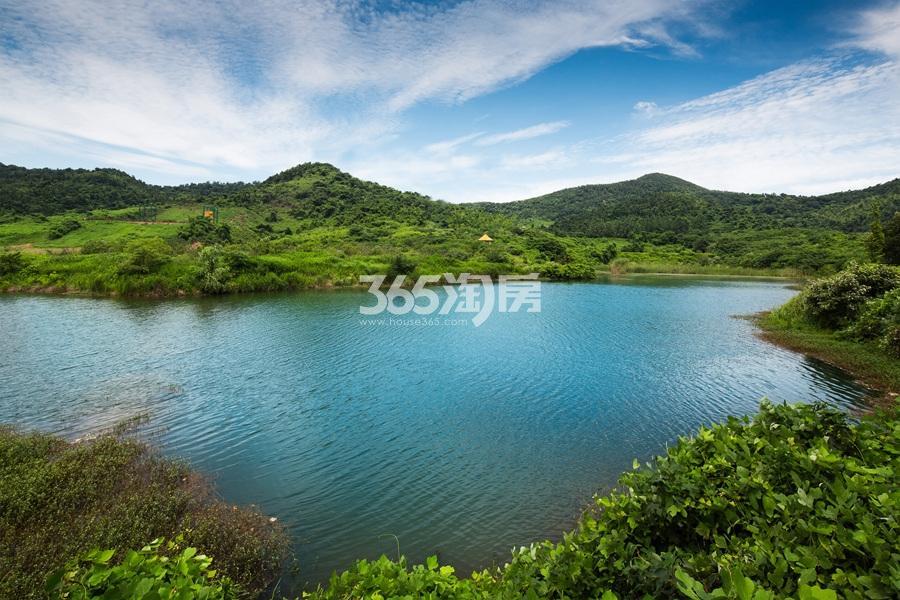 中浩山屿湖效果图
