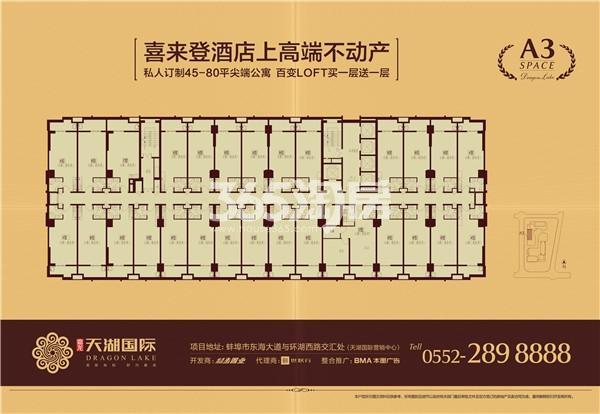 天湖国际公寓平层