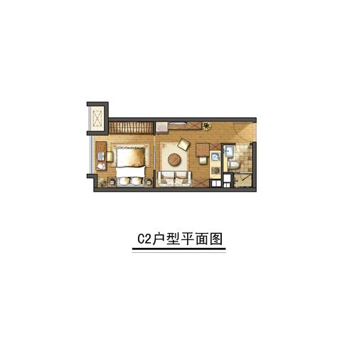 C2建筑面积39㎡户型图